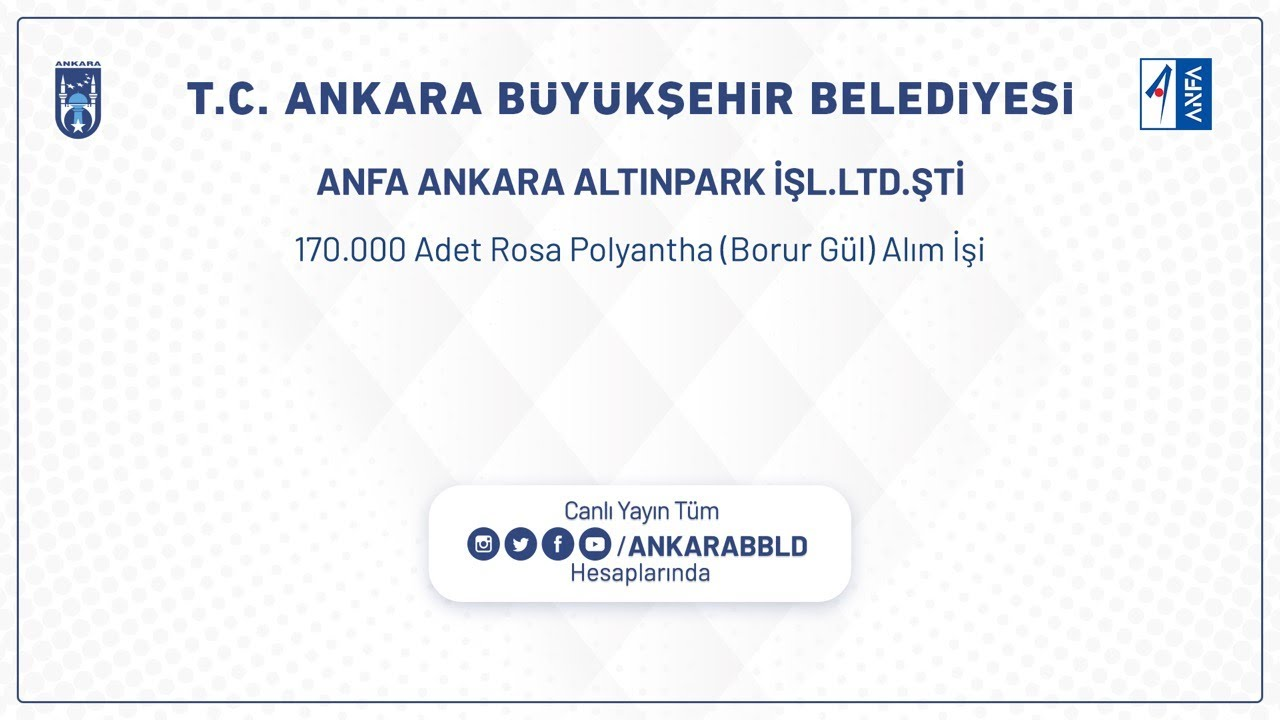 Anfa Ankara Altınpark İşletmeleri LTD. ŞTİ. 170.000 Adet Rosa Polyantha ( Borur Gül ) Alım İşi