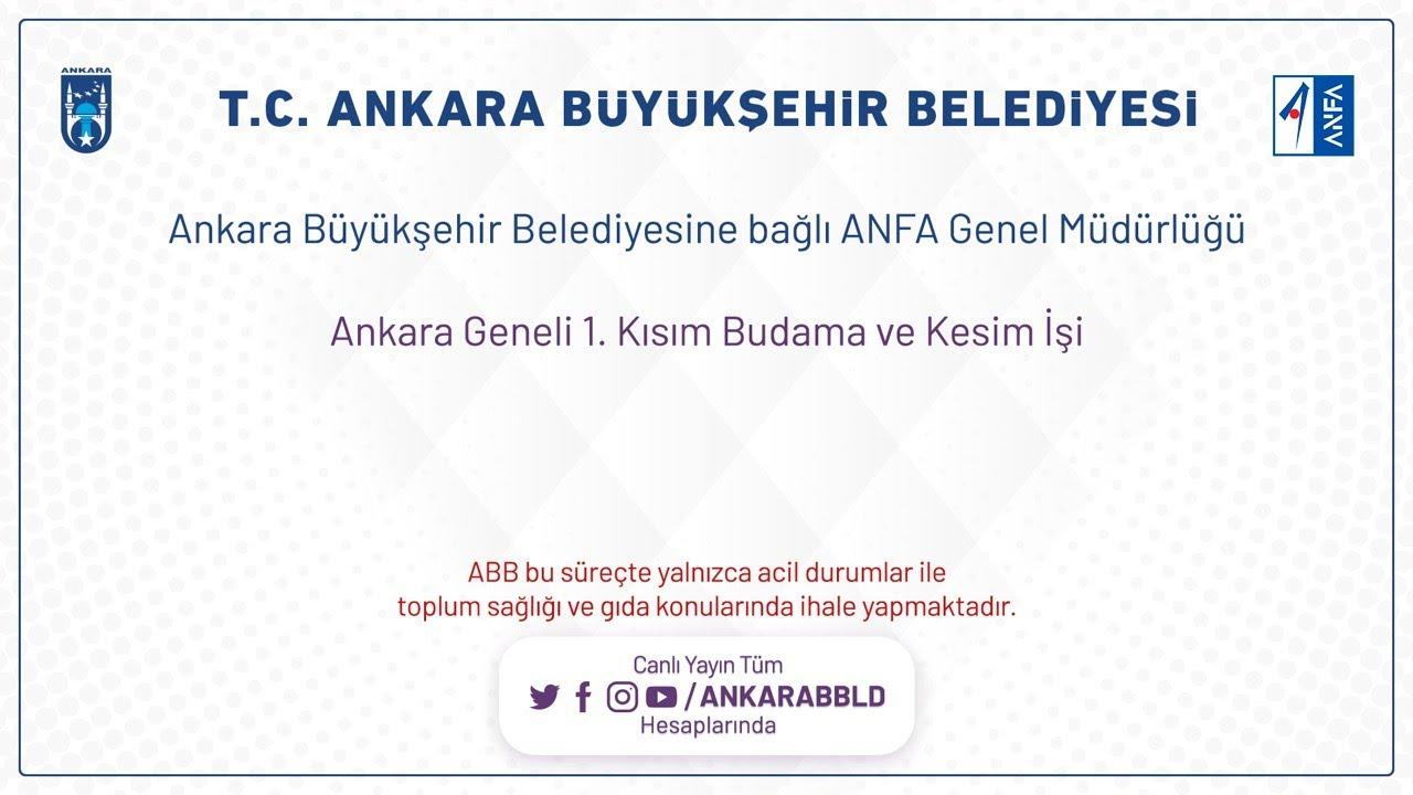 ANFA Genel Müdürlüğü Ankara Geneli 1.Kısım Budama ve Kesim İşi