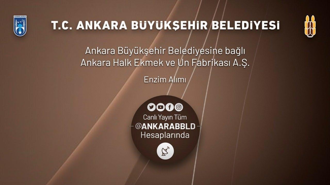 Ankara Halk Ekmek ve Un Fabrikası A.Ş. Enzim Alımı