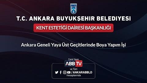 KENT ESTETİĞİ DAİRESİ BAŞKANLIĞI Ankara Geneli Yaya Üst Geçitlerinde Boya Yapım İşi