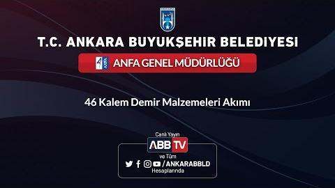 ANFA Genel Müdürlüğü 46 KALEM DEMİR MALZEMELERİ ALIMI